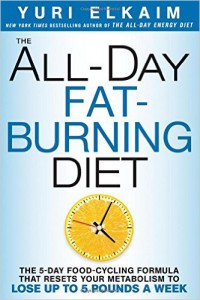 All Day Fat Burning Diet by Yuri Elkaim